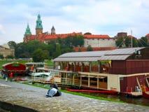Colombe et château à Cracovie Photographie stock