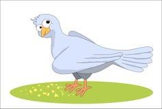colombe et les miettes illustration libre de droits
