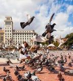 Colombes à la place de la Catalogne à Barcelone Photos libres de droits