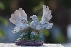 Colombes observant au-dessus d'une pierre tombale Image libre de droits