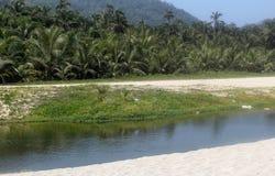 Colombia beach. Nice view ot the tayrona national park Royalty Free Stock Photos