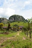 Colombia. N landscape near the town of San Jose del Guavere Stock Photos