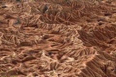 Colombia. The  desert of tatacoa Stock Photo