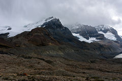 Colombia icefield Stock Foto's