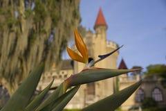 Colombia - Medellin, Antioquia - El Castillo, museum och trädgård Arkivbilder