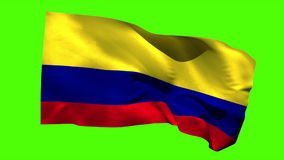 Colombia national flag blowing in the breeze stock video