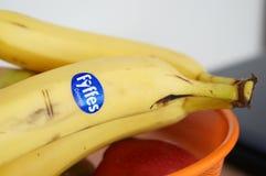 Colombian bananas Stock Image