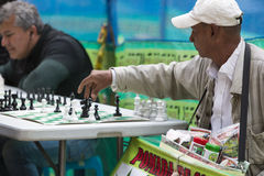 Colombian men playing chess in a park, Bogota Stock Photography