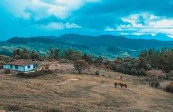 Colombian mountains landscape stock photos