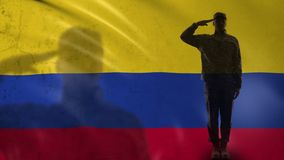 Colombian soldier silhouette saluting against national flag, defense agency. Stock footage stock video footage