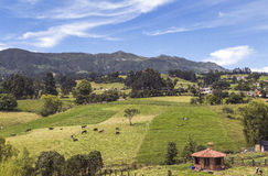 Colombianskt berglandskap royaltyfria bilder