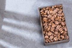 Colombianskt grillat kaffe - Coffea Utrymme för text royaltyfri foto