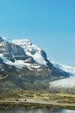 Colombie Icefield 2, Alberta, Canada Photo libre de droits