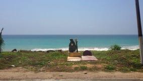 COLOMBO, SRI LANKA - FEBRUAR 2014: Ansicht von Colombo-Küste von einem beweglichen Packwagen Colombo ist ein beschäftigter und vi stock video