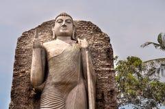COLOMBO/SRI LANKA - March 17 2018:  Replica of Aukana Buddha Sta. COLOMBO/SRI LANKA - March 17 2018: Replica of Aukana Buddha Statue in Colombo. Majestic Buddha Royalty Free Stock Images