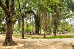 COLOMBO SRI LANKA - 17 marzo 2018: Parco di Viharamahadevi Tropica Fotografia Stock Libera da Diritti
