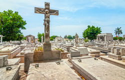 Colon Cemetery graves and tombs Royalty Free Stock Image