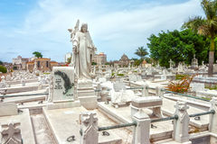Colon Cemetery graves and tombs Stock Photography