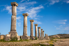Colonade of Gordiano Palace. Volubilis. The colonade of the Godiano Palace and the entrance arch to the city, Volubilis, Morocco Stock Photos