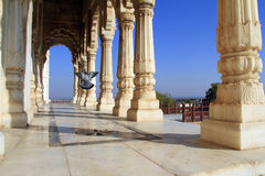 Colonade of white marble columns with flying pigeon Stock Photos