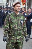 Colonel, głowa militarna parada, sprawdza oddziałów wojskowych Zdjęcia Royalty Free