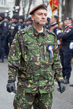 Colonel, head of military parade, inspects troops Royalty Free Stock Photos
