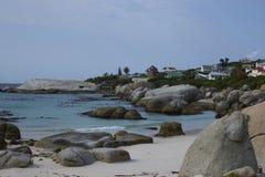 Colonia del pingüino de la playa de los cantos rodados Imágenes de archivo libres de regalías