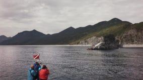 Colonia di corvi della fotografia dei turisti dei leoni marini di Steller vicino alla parte sudoccidentale della baia di Russkaya video d archivio