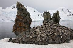 Colonia en una formación de roca - la Antártida del pingüino Fotografía de archivo