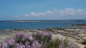 Colonia Sant Jordi, spain Paisagem de surpresa da praia encantador Es Trenc Ganhou a reputa??o da praia das cara?bas video estoque