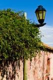Colonia, Uruguai foto de stock royalty free
