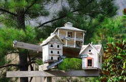 Colonial Birdhouses Royalty Free Stock Images