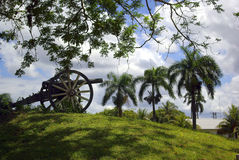Colonial canon. An antique canon and three palm trees are symbolic for the occupation of tropic colonies by rich countries in the past Royalty Free Stock Photo