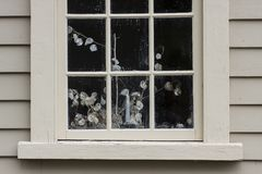 Colonial house window with still life plant. Colonial cream color house and window with still life plant inside royalty free stock images