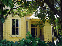Colonial house 3. Bay window through foliage royalty free stock photography