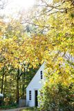 Colonial house with fall foliage. A colonial house surrounded by fall foliage in colonial Massachusetts royalty free stock photo