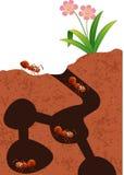 Colonie de fourmis de bande dessinée illustration de vecteur