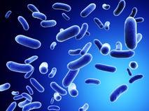 Colonie des bactéries illustration de vecteur
