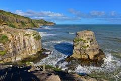 Colonie des fous de Bassan à la plage de Muriwai Image libre de droits