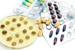 Colonie di Penicillum e pillole differenti Immagine Stock Libera da Diritti