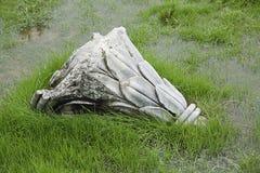 Colonna antica rovinata Fotografie Stock Libere da Diritti