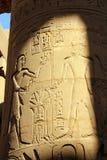 Colonna con le immagini ed i hieroglyphics antichi dell'egitto Immagine Stock Libera da Diritti