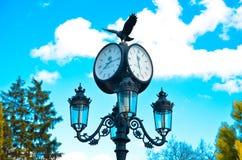 Colonna con un orologio e una lampada nel eco-parco Fotografie Stock Libere da Diritti