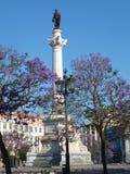 Colonna di Dom Pedro IV, Lisbona Fotografia Stock