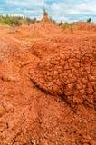 Colonna rossa del deserto Immagine Stock Libera da Diritti