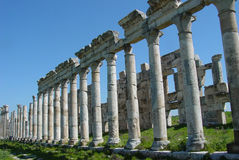 Colonnade. The 1.8km long colonnade at Apamea, Syria, is the longest still standing in the Roman world Stock Image