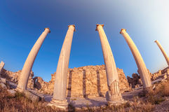 Colonnade at ancient Salamis ruins, Cyprus Royalty Free Stock Images