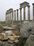 Colonnade in Apamea Stock Afbeelding