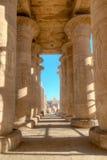 Colonnade av Ramesseumen i Luxor, Egypten Arkivbilder
