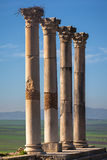 Colonnade of the Capitoline Temple, Volubilis Stock Image